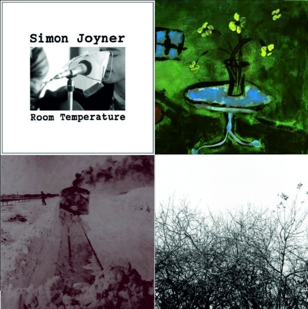 Neki od ključnih Joynerovih albuma: Room Temperature, Skeleton Blues, Out into the Snow i Lost with the Lights On