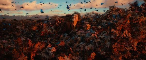 Jedan od najljepših prizora kako u Tolkienovoj knjizi, tako i u Jacksonovoj ekranizaciji iste: popevši se na vrh stabla u Mrkodolu da bi izvidio trenutni položaj, Bilbo će uznemiriti roj šumskih leptira.