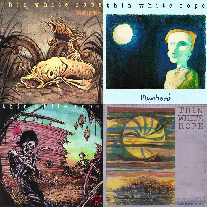 Neki od ključnih albuma TWR: Bottom Feeders, Moonhead, In the Spanish Cave i Sack Full of Silver