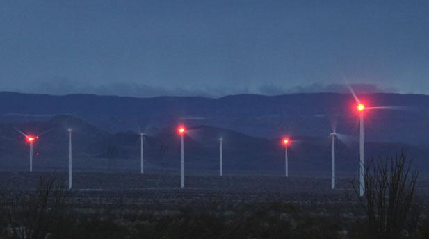 Ocotillo-night-light1-crop