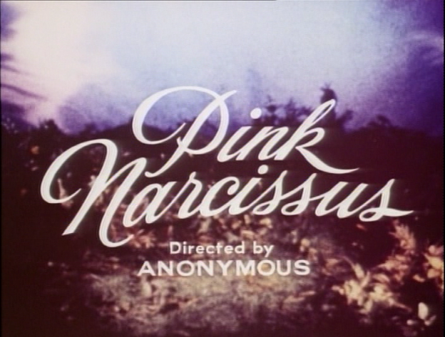 Pink-Narcissus-end-credits