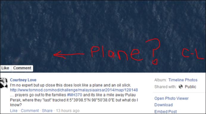 courtney-love-facebook-missing-plane