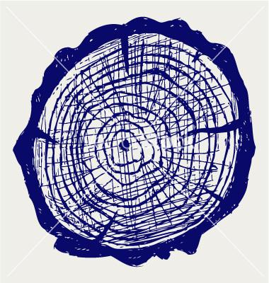 cross-section-of-tree-stump-vector-985897