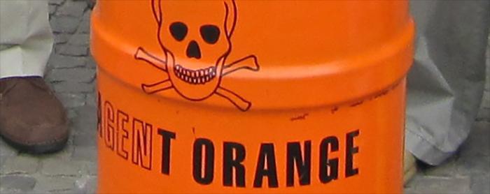 agnet_orange_barrel-735-350